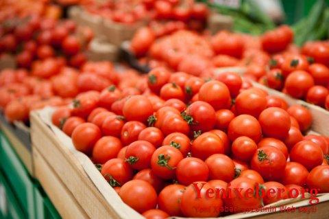 Bu müəssisələrdən də Rusiyaya pomidor ixrac ediləcək