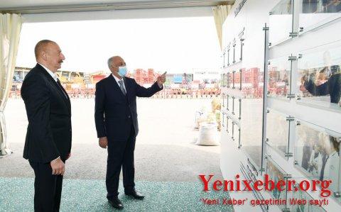 """İlham Əliyev """"Azərsun Şamaxı Aqropark""""ın açılışında iştirak edib -"""